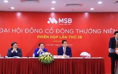 Đại hội cổ đông MSB đặt mục tiêu lợi nhuận năm 2020 đạt 1 439 tỷ