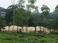 Cần xử lý dứt điểm tình trạng khai thác cát trái phép tại thị trấn Vĩnh Tuy