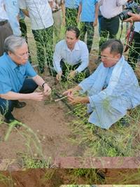 Làm gì để mô hình nông nghiệp hữu cơ kết hợp năng lượng không bị chết yểu