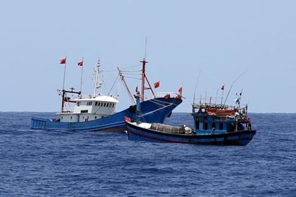 Chấm dứt tình trạng khai thác hải sản bất hợp pháp