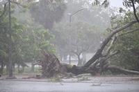 Từ nay đến cuối năm có khoảng 3 - 4 cơn bão ảnh hưởng vào đất liền nước ta