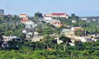 Kiến nghị kiểm điểm lãnh đạo UBND huyện Di Linh