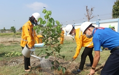 KĐN tiếp tục Chương trình trồng cây năm 2021 tại Bà Rịa