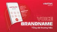 Dịch vụ tổng đài VoiceBrandname Giải pháp giao tiếp hiệu quả với khách hàng cho doanh nghiệp thời chuyển đổi số