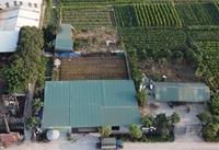 Cần sớm kiểm tra công tác quản lý đất đai tại xã Quất Động