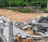 Xử lý nghiêm hành vi cấu kết, mua bán, san lấp đất xây dựng trái phép